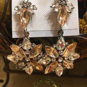 Elegant Clear Crystal Rhinestone Earrings